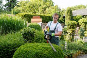Comment créer un beau jardin pour sa maison à Arras ...
